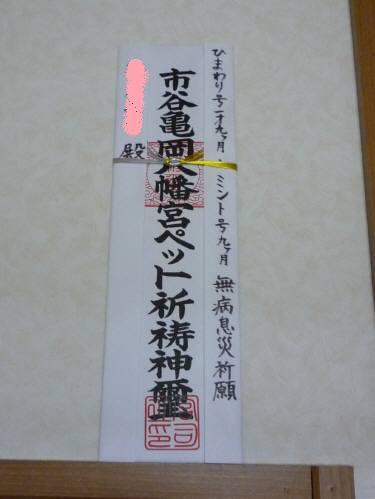 P1090869jpg112